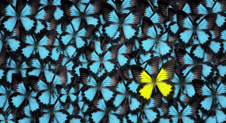 3 Ways to Stand Out from the Competition with Better CX